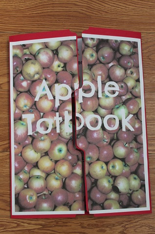 Apple Totbook